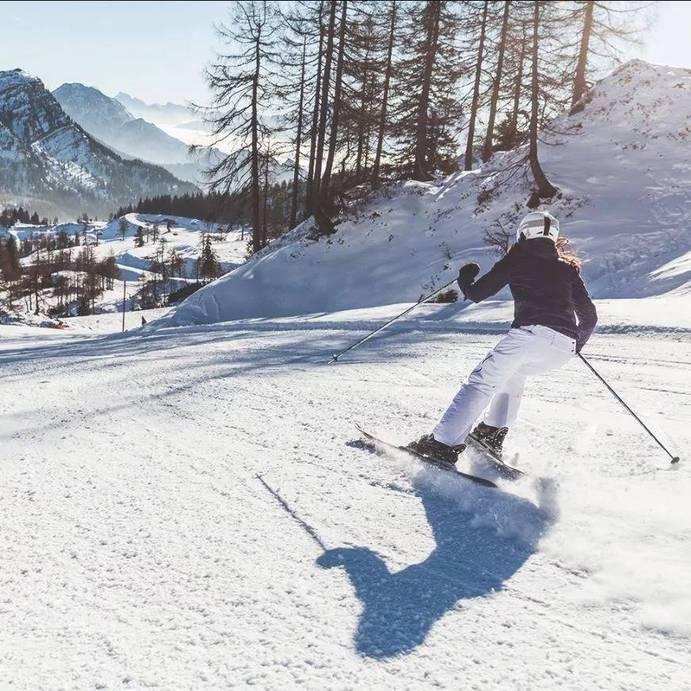 SALE in Katschberg-Carinthia-Europe, Austria, Carinthia