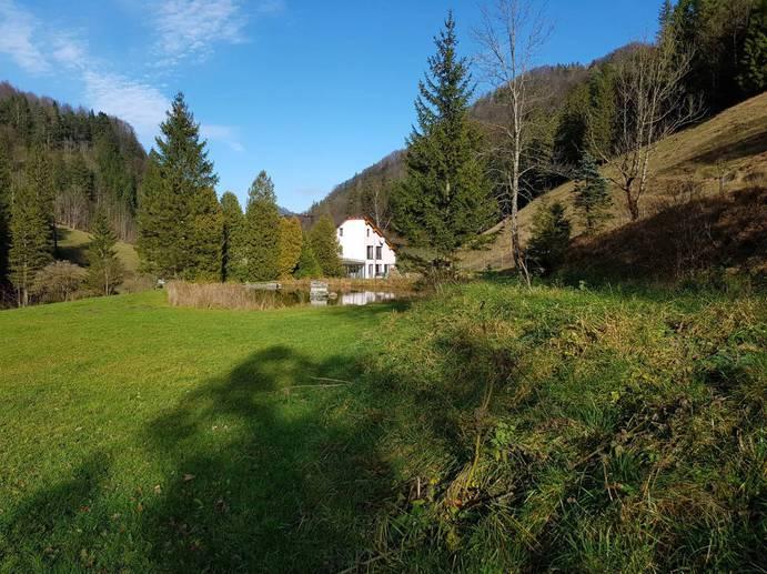 SALE in Schacherlweg-Scheibbs-Europe, Austria, Scheibbs